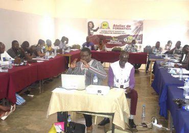 Formation : Renforcement de capacité des journalistes et animateurs culturels du Burkina